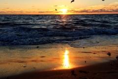 sunrise-sessions-02